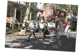cape may carriage tours